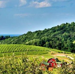 Photo Credit: www.visitcharlottesville.org